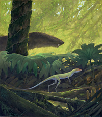 Lagosuchus and Probelesodon