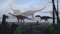 Afrovenator and Sauropods