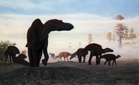 Maiasaura Nesting Grounds