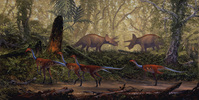 Struthiomimus and Triceratops